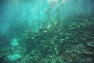 Photo of the Day, photography, maledives, wanderlust  more on: www.fashion-friends-fun.blogspot.de
