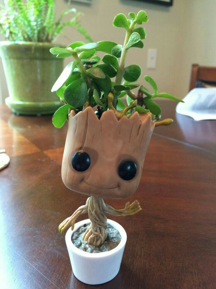 QUE FOFO ##iamgroot
