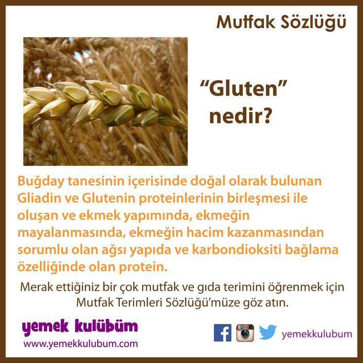 MUTFAK ve GIDA TERİMLERİ SÖZLÜĞÜ : Gluten Nedir?  http://yemekkulubum.com/kategori/mutfak-ve-gida-terimleri-sozlugu