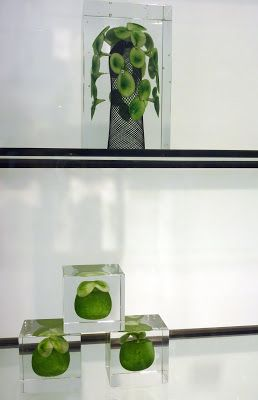 Iitala glass design displayed in Iittala store in Helsinki | a bit of this & a bit of that: finland