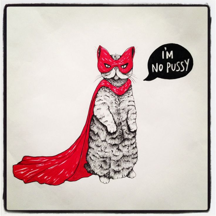 Badass Wallpapers: Super Cat Red Cape Illustration IPad Wallpaper HD #iPad