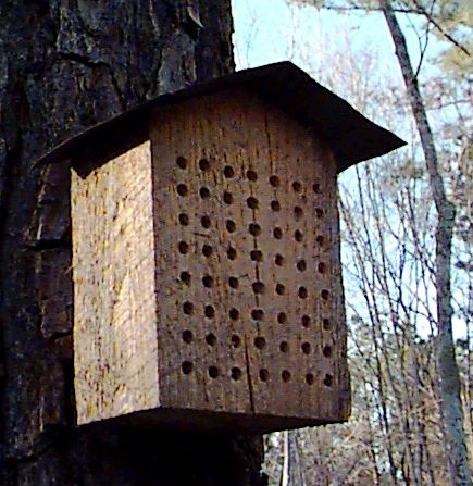 Homemade mason bee house