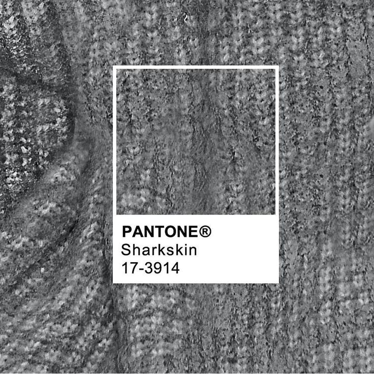 Sharkskin one of our top hues for Fall 2016 continues to make its mark during #NYFW.