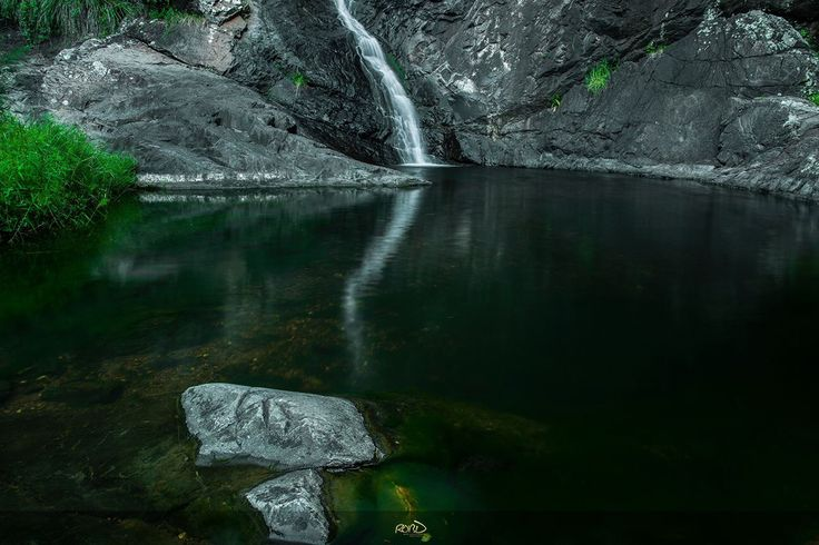 Cedar Creek Falls, Mount Tamborine #tamborine #cedarcreek