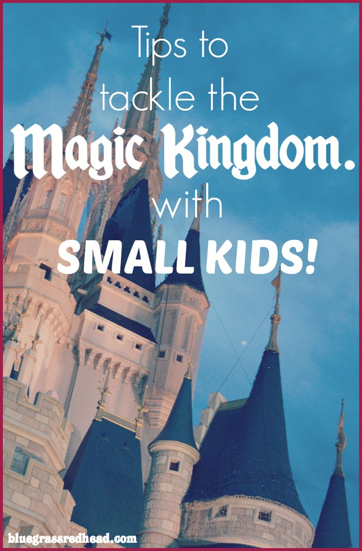 Here are the lessons we learned from our first visit to Disney World's  Magic Kingdom with a 5-year-old and 3-year-old!  We've just returned from our first family trip to Disney World and we had a  blast! After months of planning, I have to say our day at the Magic Kingdom  was indeed magical and I'm here to share all our tips, tricks, and advice.