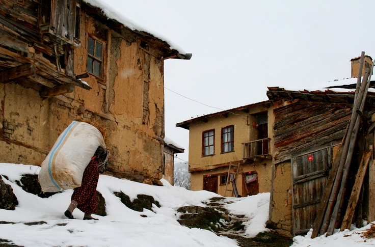 life is hard...  Adapazari / Turkey