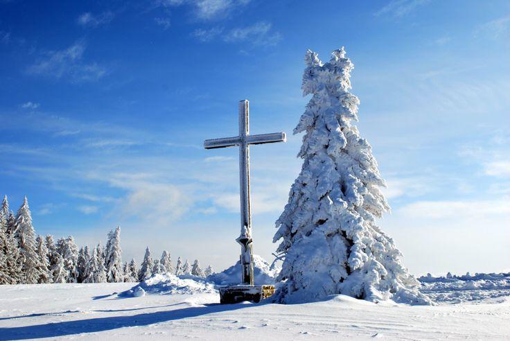 Het Beierse Woud in een prachtige witte wereld!