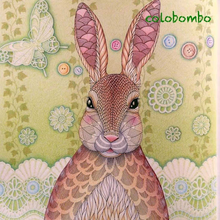 Colobombo Instagram O 143 Coloring BooksColouringAnimal KingdomRabbitTropicalReino AnimalAnimals