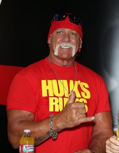 Hulk hogan 1994-2753
