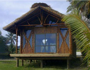 simon velez bamboo - Cerca con Google