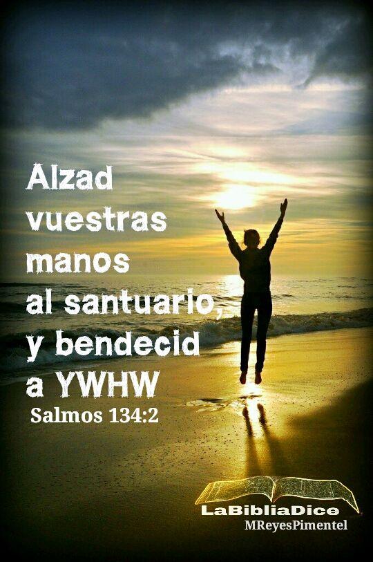 LaBibliaDice: Salmo 134:2