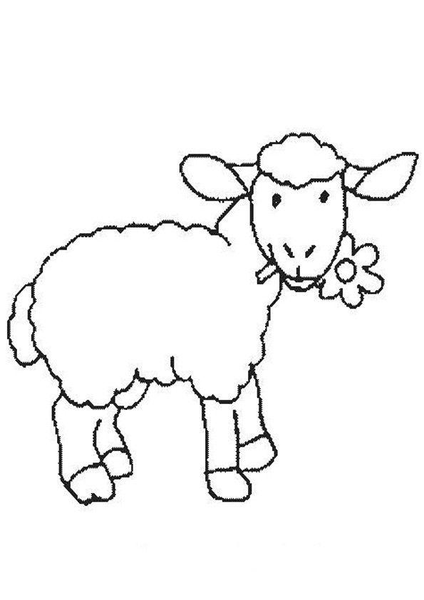 Schaf 27 | Ausmalbilder tiere, Ausmalbilder, Schafe