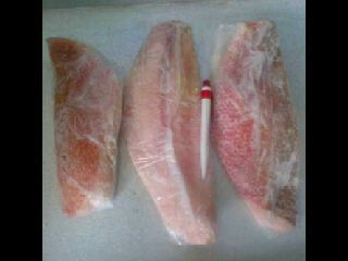 Fillet Ikan Kakap | Kaskus - The Largest Indonesian Community.  Ikan fillet kakap tanpa duri, siap masak untuk prasmanan, pesta, slametan atau untuk pribadi keluarga anda.  Hubungi 081362525203