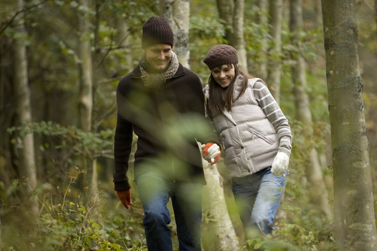 A romantic walk in Hamsterley Forest