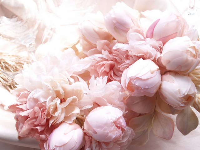 @Heather Patterson: Pink Wedding, Rose, Pink Flowers, Inspiration, Beautiful, Peonies