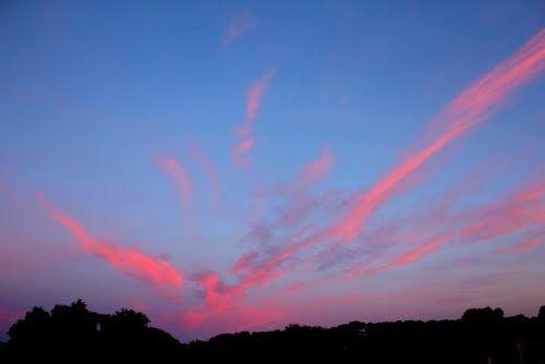 Panoramio - Photos by Garnet Allwright