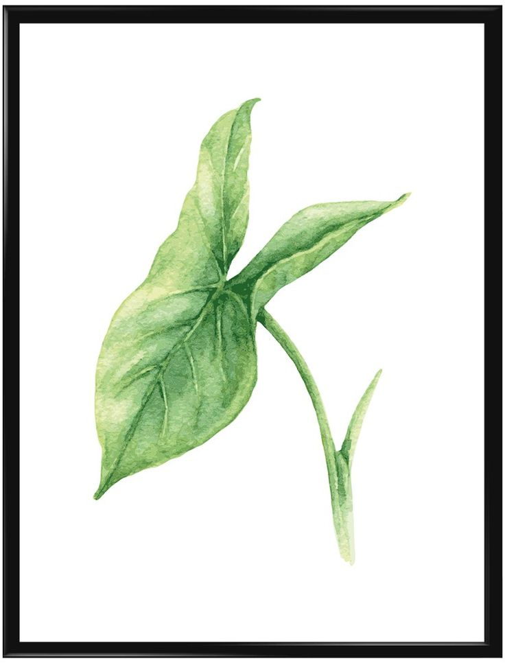 Kanske är detta en poster för en växtälskare? Eller för dig som önskar en klick…
