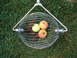 Harvesting tools.  This one picks up fallen fruit or nuts!