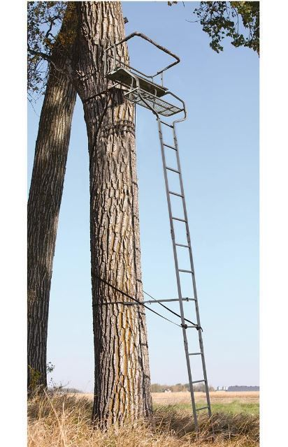 Best 25 ladder tree stands ideas on pinterest xmas tree for Deer stand steps