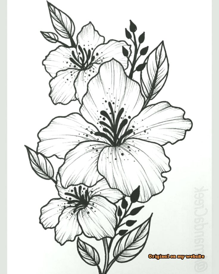 Art Sketches Ideas I Like That The Big Flower Is In The Middle For A Thigh Big Flower Middle Best Art Pin Beautiful Flower Drawings Flower Sketches Flower Drawing