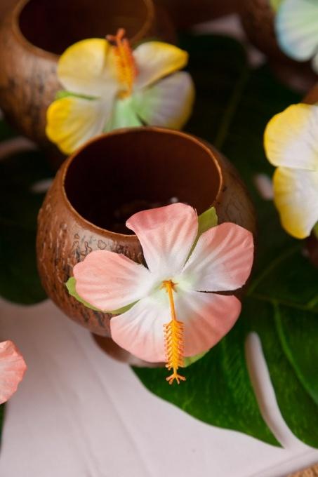 Festa Luau Havaiano                                                                                                                                                                                 Mais