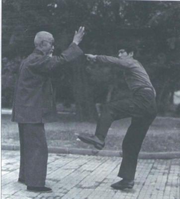 Ling Kong Jin with Tai Chi Master Wu Tunan - Tuishou