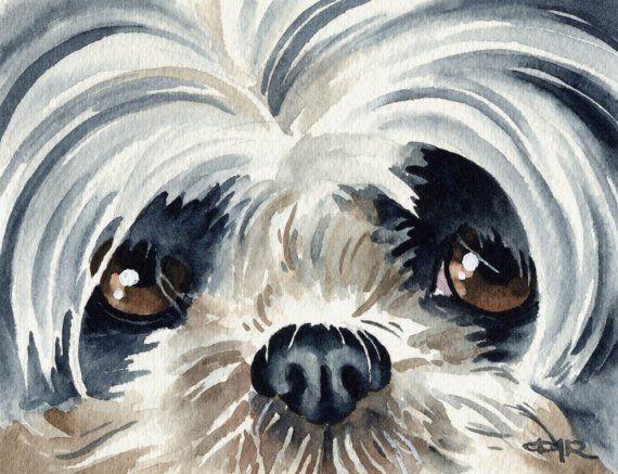 SHIH TZU chien Art Print signée par l'artiste DJ Rogers