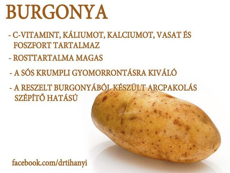 Burgonya | Socialhealth