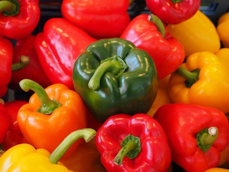 Сладкий перец: от рассады до урожая по пунктам. Просто и доступно! | Вперед✔огород | Яндекс Дзен