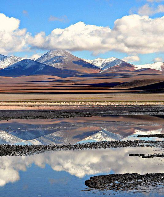 Reflejos en Laguna Blanca/Catamarca - ARGENTINA