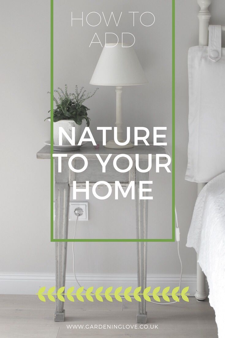 5 Ways To Bring Nature Into Your Home. Adding nature to your home can bring a calming, peaceful atmosphere. Use these ideas to incorporate a touch of nature into your home #nature #lifestyle #wellness #home #health http://www.gardeninglove.co.uk/nature-into-your-home/?utm_campaign=crowdfire&utm_content=crowdfire&utm_medium=social&utm_source=pinterest