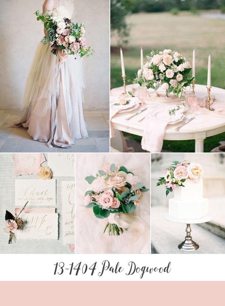 Pale Dogwood Spring Wedding Inspiration Board