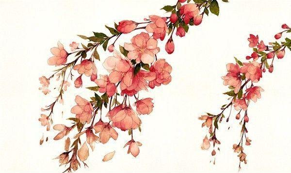 как нарисовать цветы акварелью шаг 7