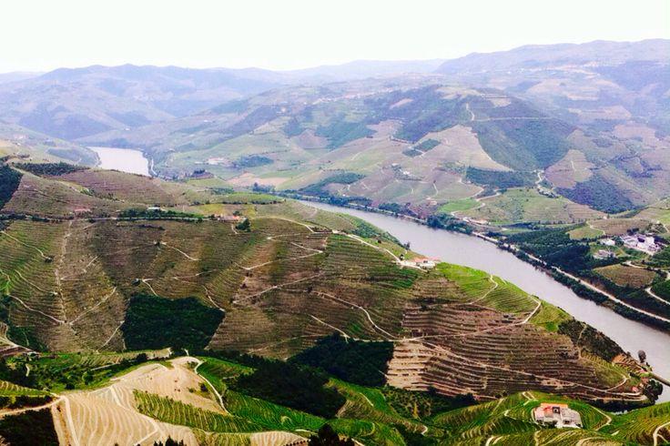 Douro, Portugal <3