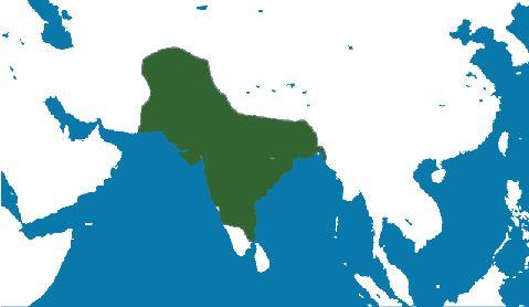 El Imperio Mogol o Mogul fue un poderoso Estado turco islámico del subcontinente indio entre los siglos XVI y XIX.