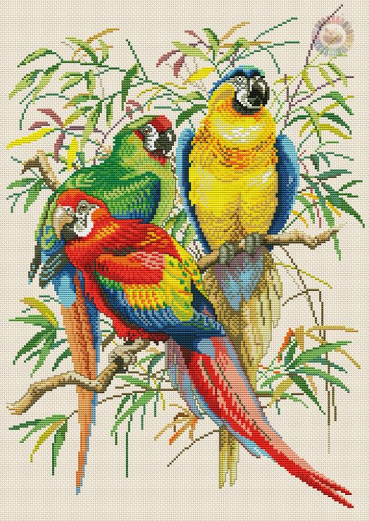 3 tropical birds cross stitch picture. Gallery.ru / Фото #4 - 78 - kento