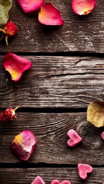 Download 360x640 «Petals on wood» Cell Phone Wallpaper. Category: Textures