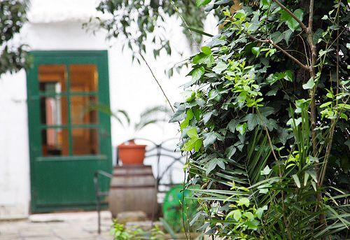 Altrettanto carico di fascino e memoria, il suo Giardino delle Delizie, reso incantato da verdeggianti pergolati ed alberi di arance, mandarini e nespole... http://www.salentomonamour.com/mangiare/item/106-a-casa-tu-martinu.html