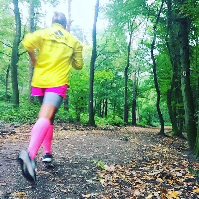 Heute ist der #Rügenbrückenlauf u ich bin mal wieder passend mit perfektem Timing krank... na toll! Aber ich wünsche allen Teilnehmern viel Erfolg! Ich schnief noch ne Runde vor mich her... ____________________________ #runninggirl #running #mecklenburgvorpommern #hst #ozeaneum#laufeninmv #meckpomm #nevernotrunning außer wenn #krank #kannnichtmitlaufen #rügenbrückenlauf2017 #rügen #stralsund #runningmom #muckimotivation #strammermax #compressionwear #prsample #waldlauf #thinkpink…