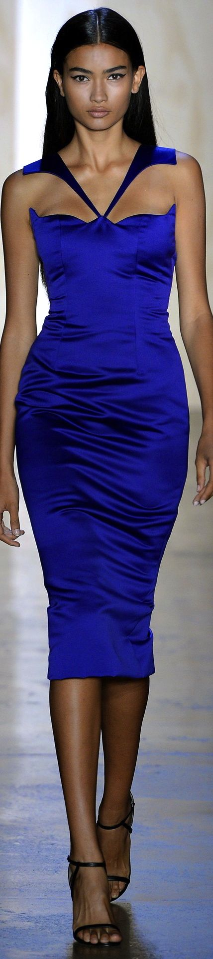 Cushnie Et Ochs Spring 2014 RTW - This dress needed a full length gown and a long cape to go with this amazing neckline!