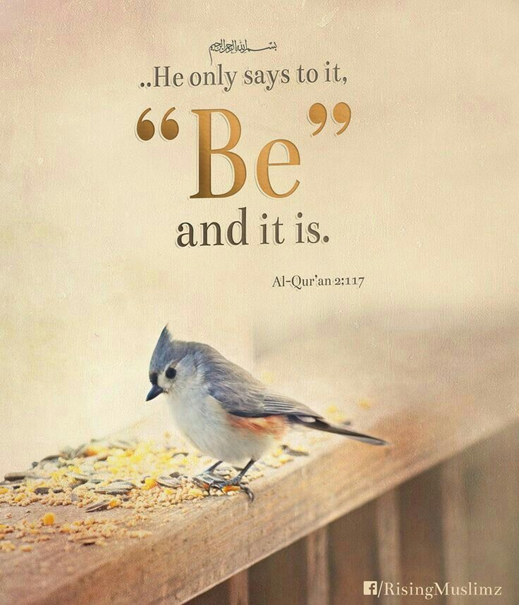 Pinterest Inspirational Quotes About Life: 25+ Best Islamic Inspirational Quotes Ideas On Pinterest