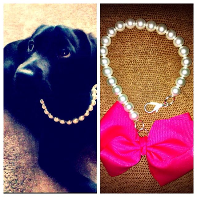 DIY dog necklace! Pearls, string, clasp, and bow. I am going to use this for a classy photo session with my pooch :)