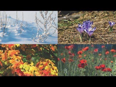 Neljä vuodenaikaa - YouTube