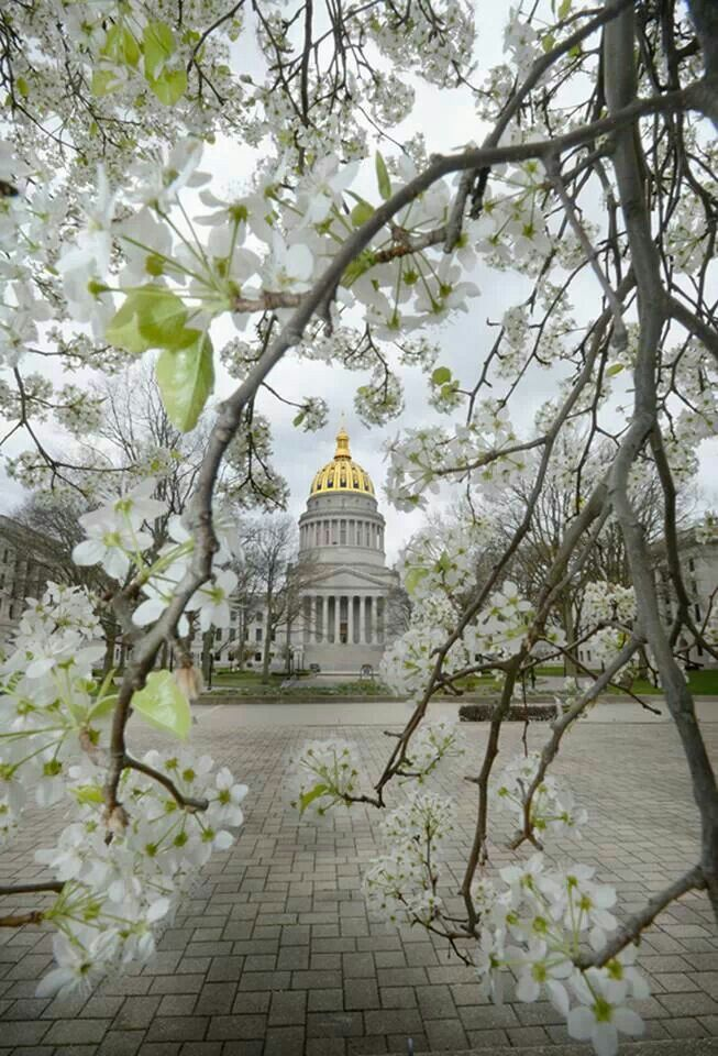 Charleston, West Virginia by Tom Hindman This photo is probably about as perfect as it can get!