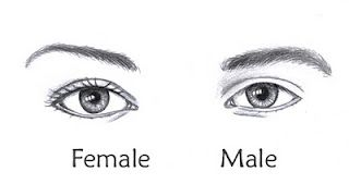 Pencil Eyebrows - male/female (how to)