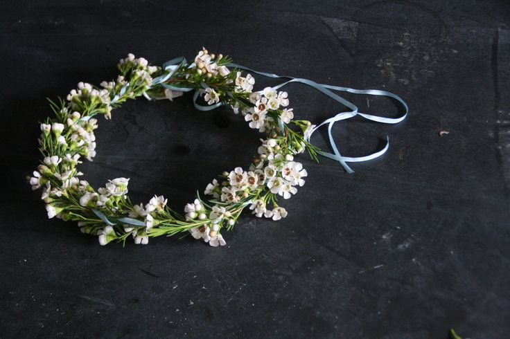 Waxflower circlet