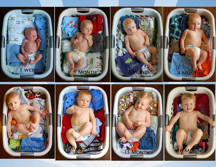 Laundry basket picture / growing baby pictures. We did a picture once a week for the first eight weeks, then we did monthly. Positioned the basket in the same place for each picture to try and keep lighting the same. We stand in a kitchen chair above him to really get the angle we wanted. This has been great to document his growth.