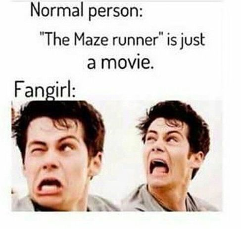 My family can't stand with me when I start talking about Maze Runner