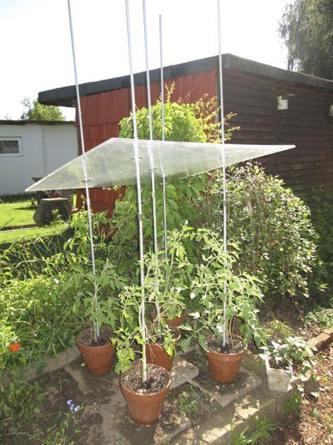 Favorit tomatendach Bauanleitung zum selber bauen | Heimwerker-Forum HK53
