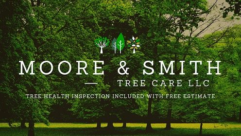 Family Owned Tree Service - http://mooresmithtrees.com/family-owned/